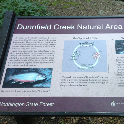 Dunnfield Creek