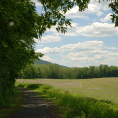 McDade Trail in close to Smithfield Beach